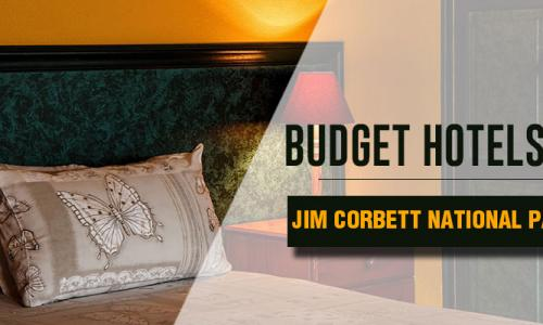 Budget Hotels in Jim Corbett National Park