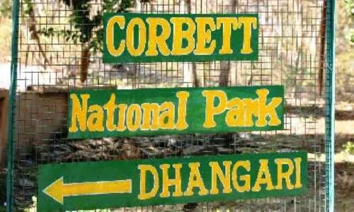 Dhangadi Gate