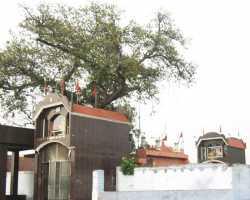 Shree Bheemshankar Shiva Temple Kashipur | Location Travel Tourism Guide