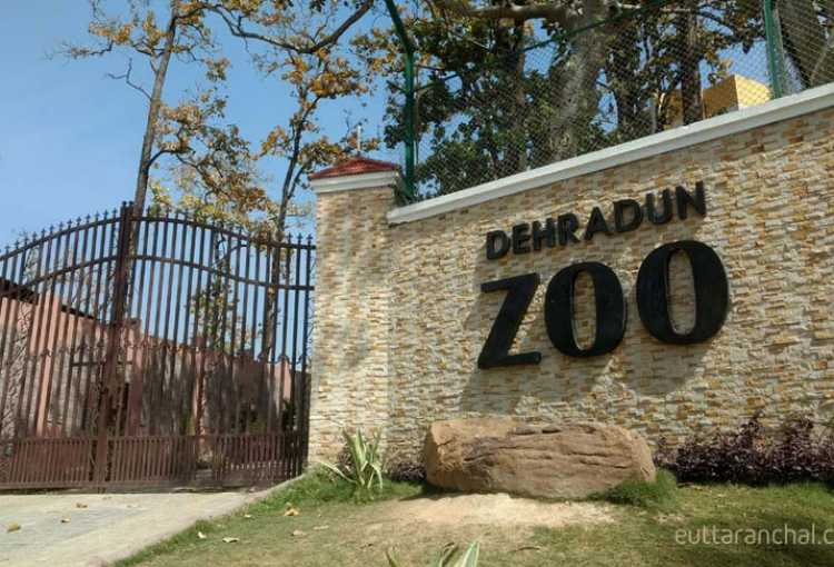 Image result for Dehradun Zoo dehradun
